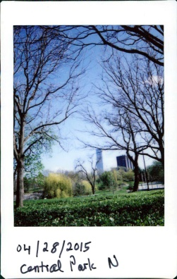 beginner's luck: early instant image